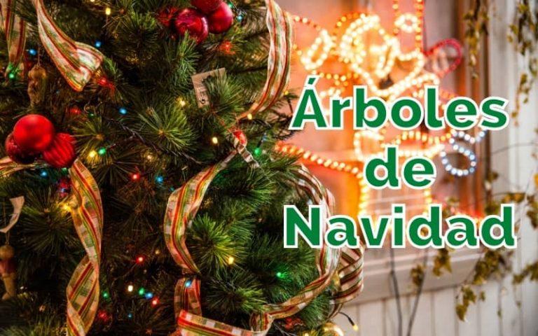 árboles para navidad